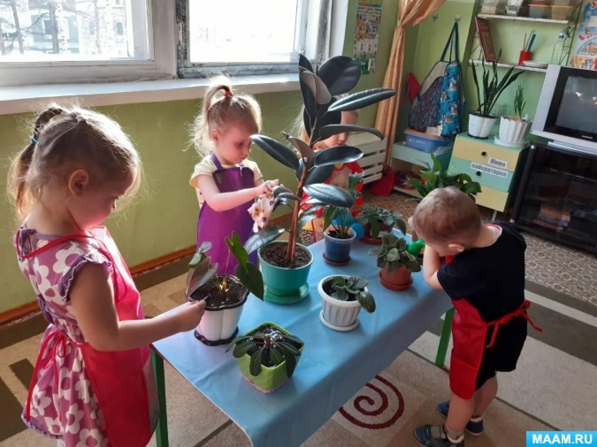 Картинка коллективный труд в детском саду