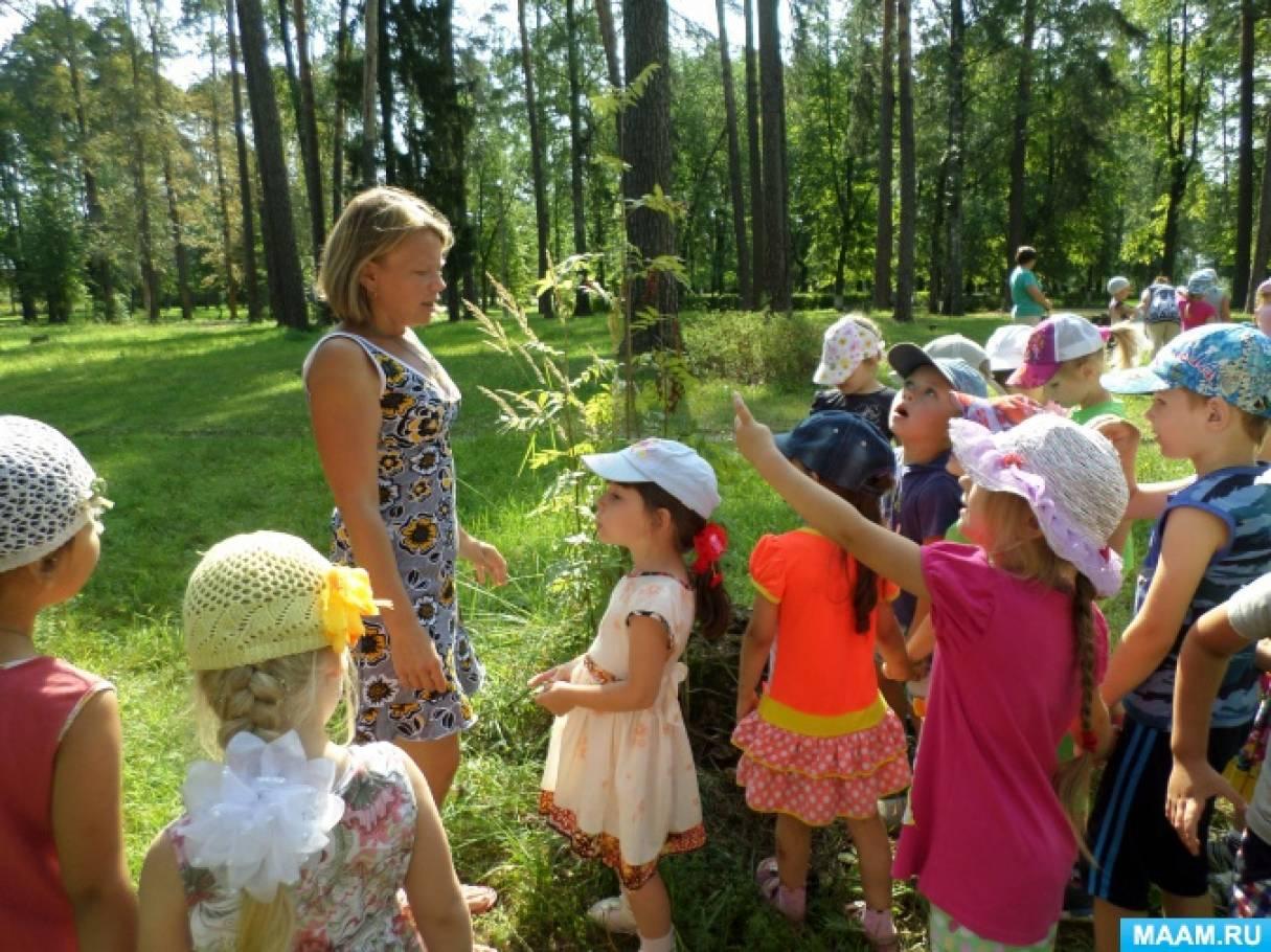 Фото природы парка для детей