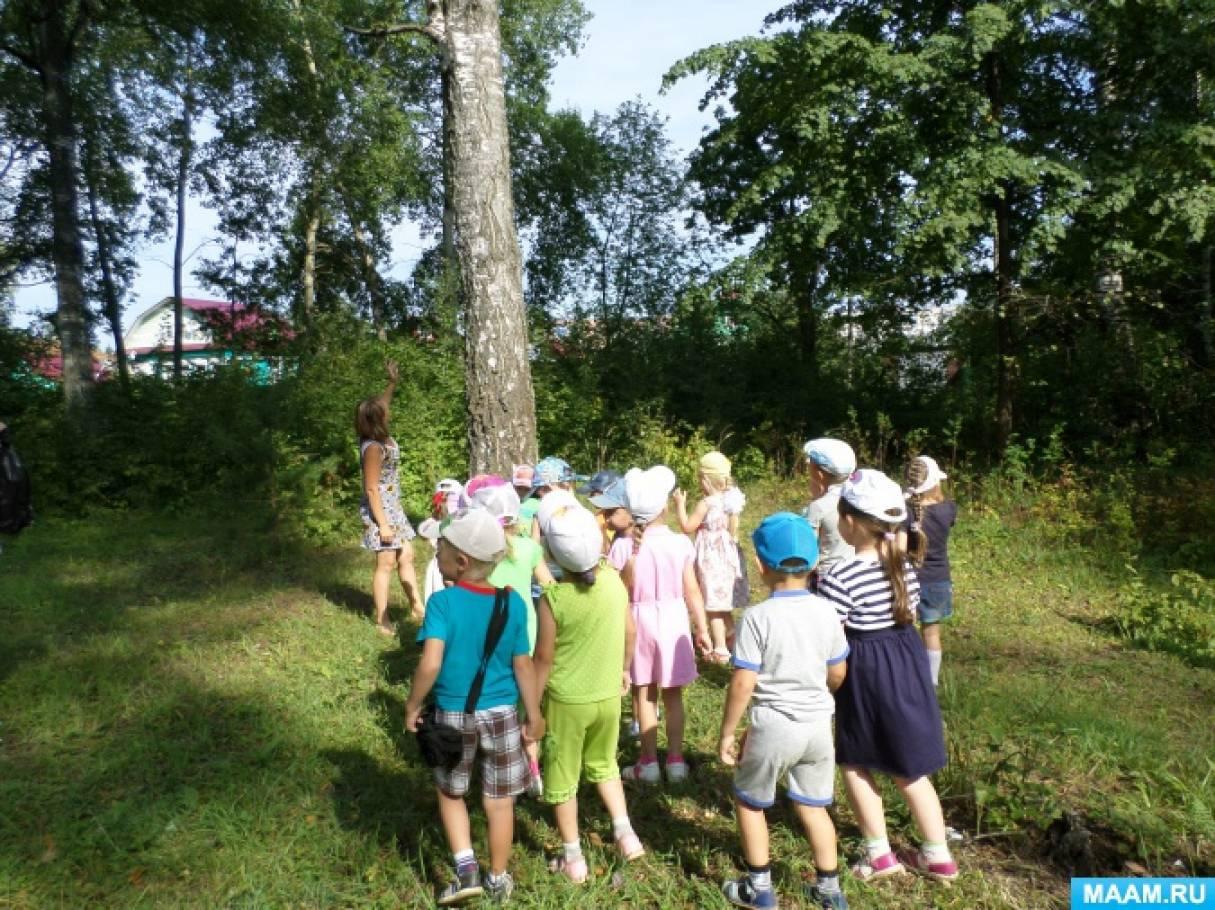Сценарий для похода на природу для детей
