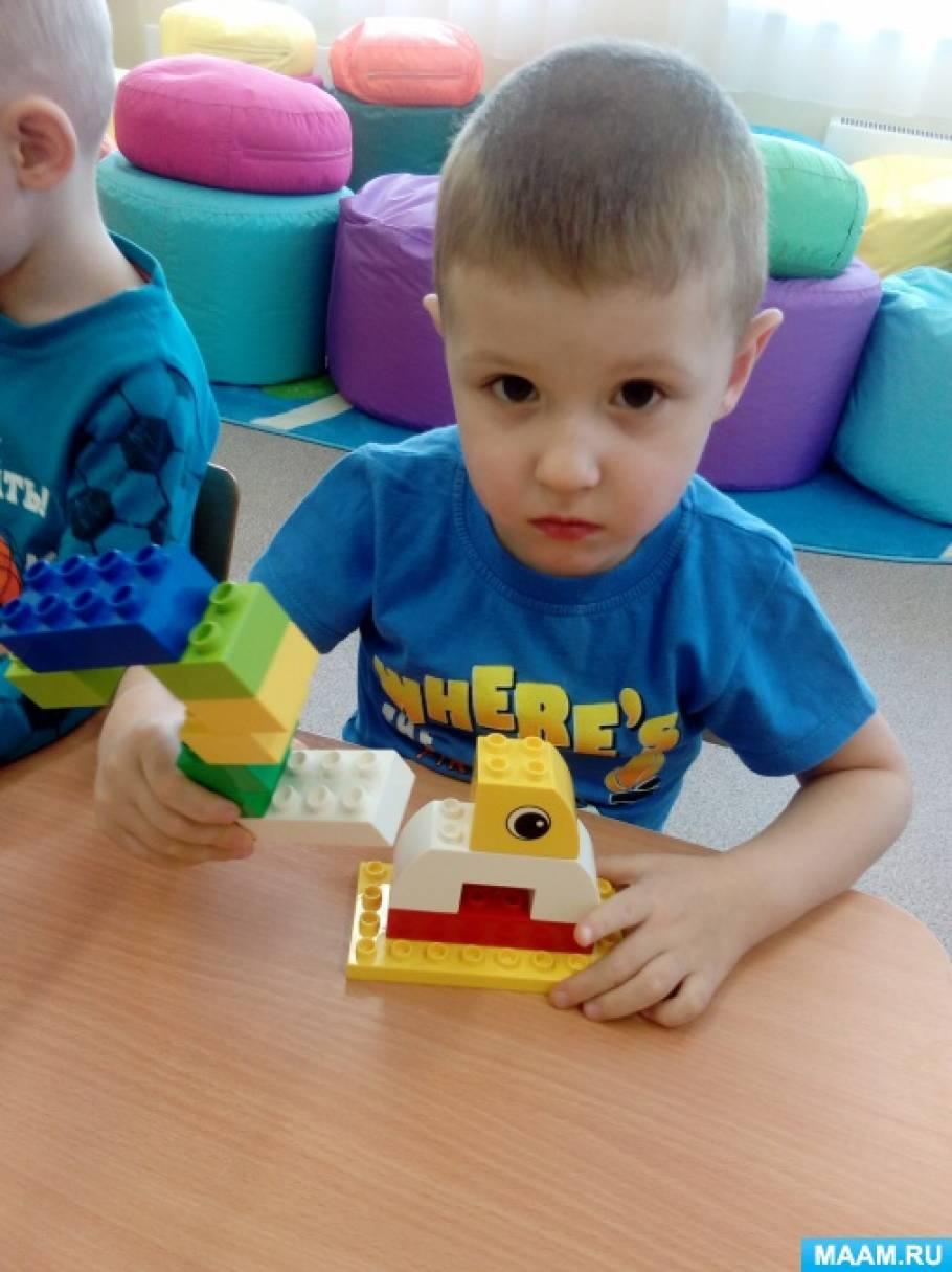 Фотоотчет по дополнительной образовательной программе. Кружок лего конструирование «Первые шаги»