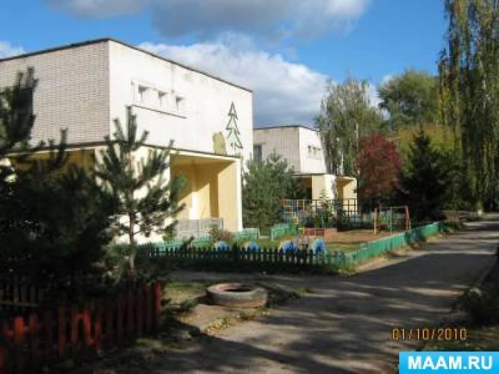один детский сад 12 бор нижегородская область это