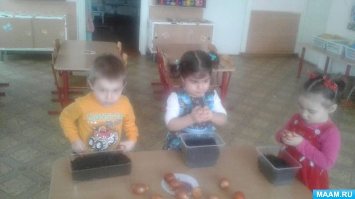 Экологический проект «Огород на подоконнике» в первой младшей группе