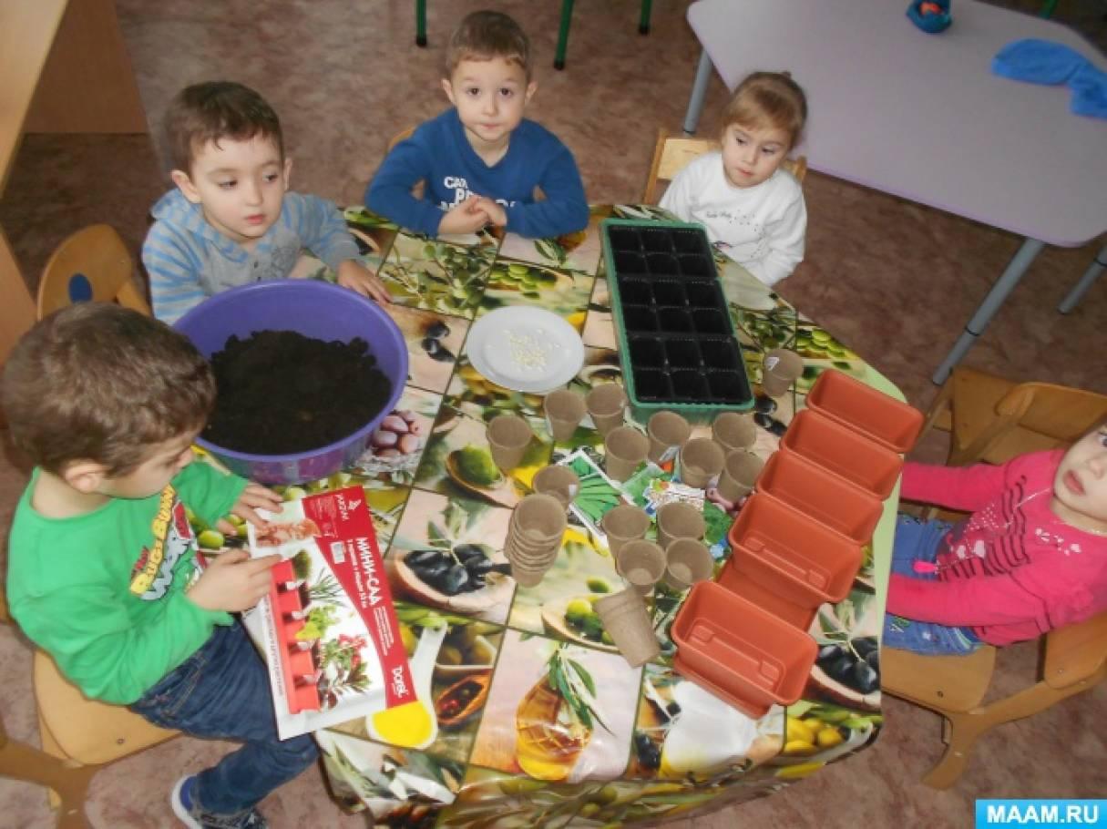 Познавательно-исследовательский проект «Огород на подоконнике» во второй младшей группе