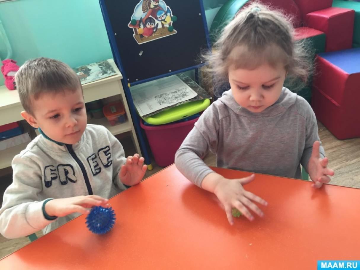 Проект в детском саду: «Волшебный мяч су-джок»