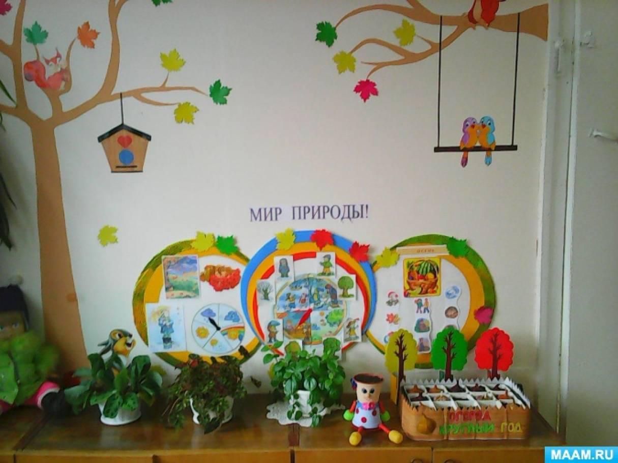 Уголки в детском саду своими руками уголки природы 5