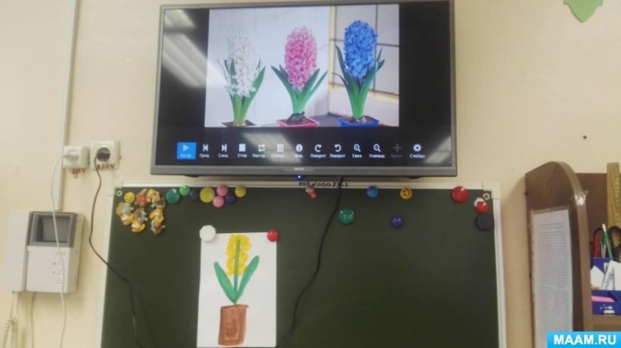 Конспект занятия по рисованию во второй младшей группе «Гиацинт в горшке»