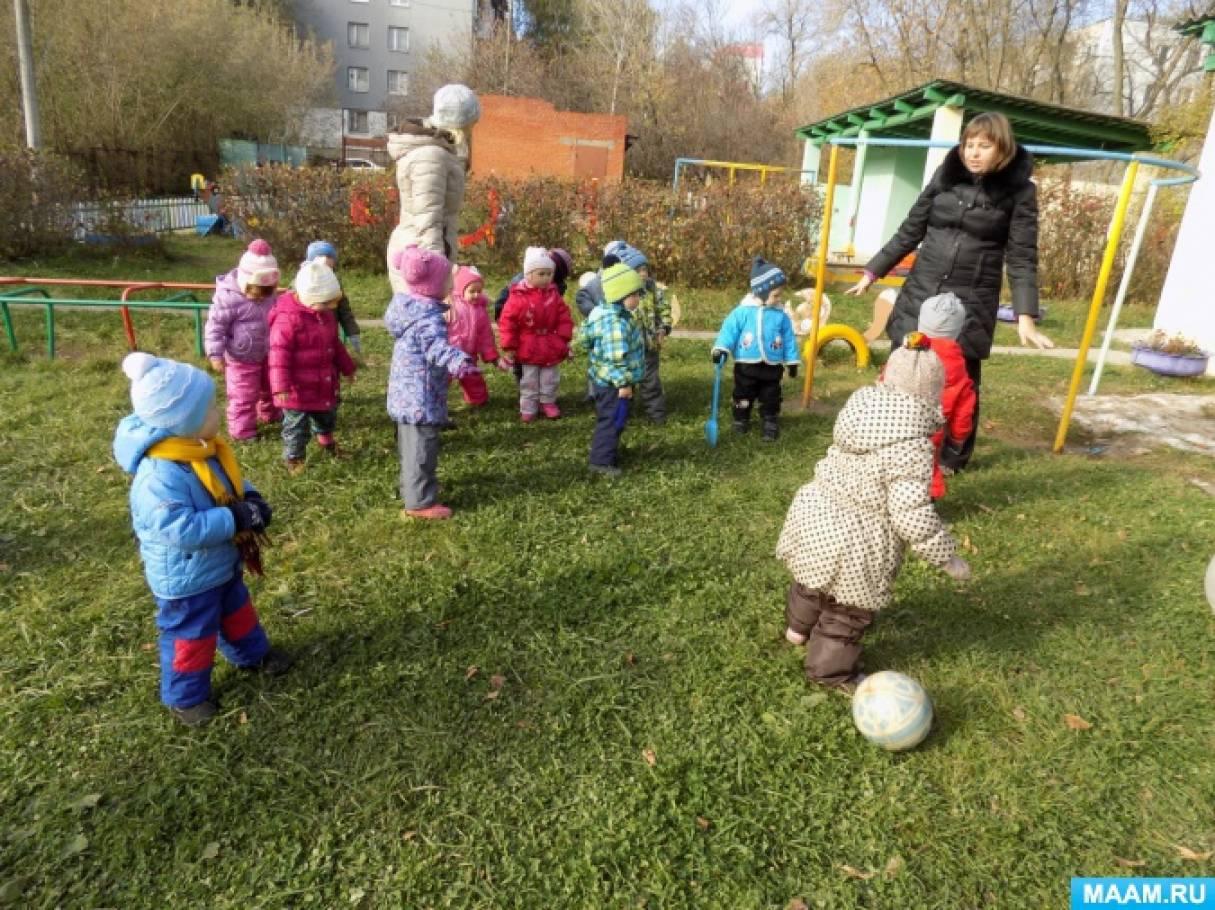 игры на прогулке для детей 2 3 лет