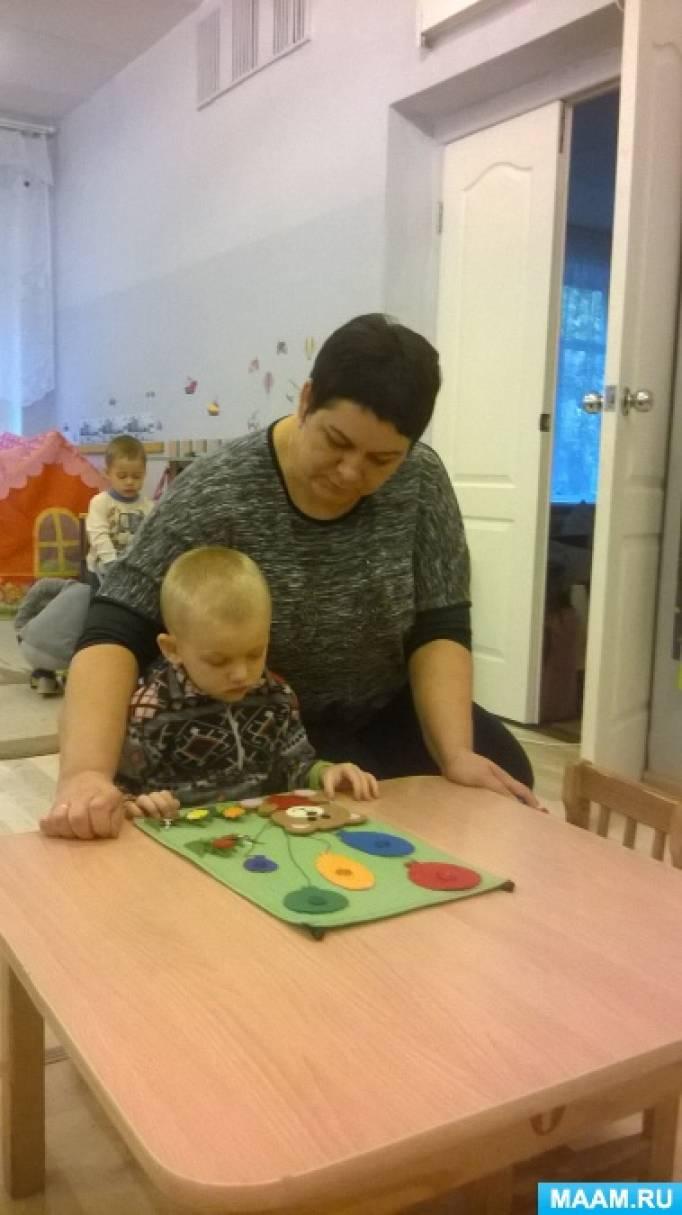 Использование развивающих тренажёров в работе с детьми раннего возраста
