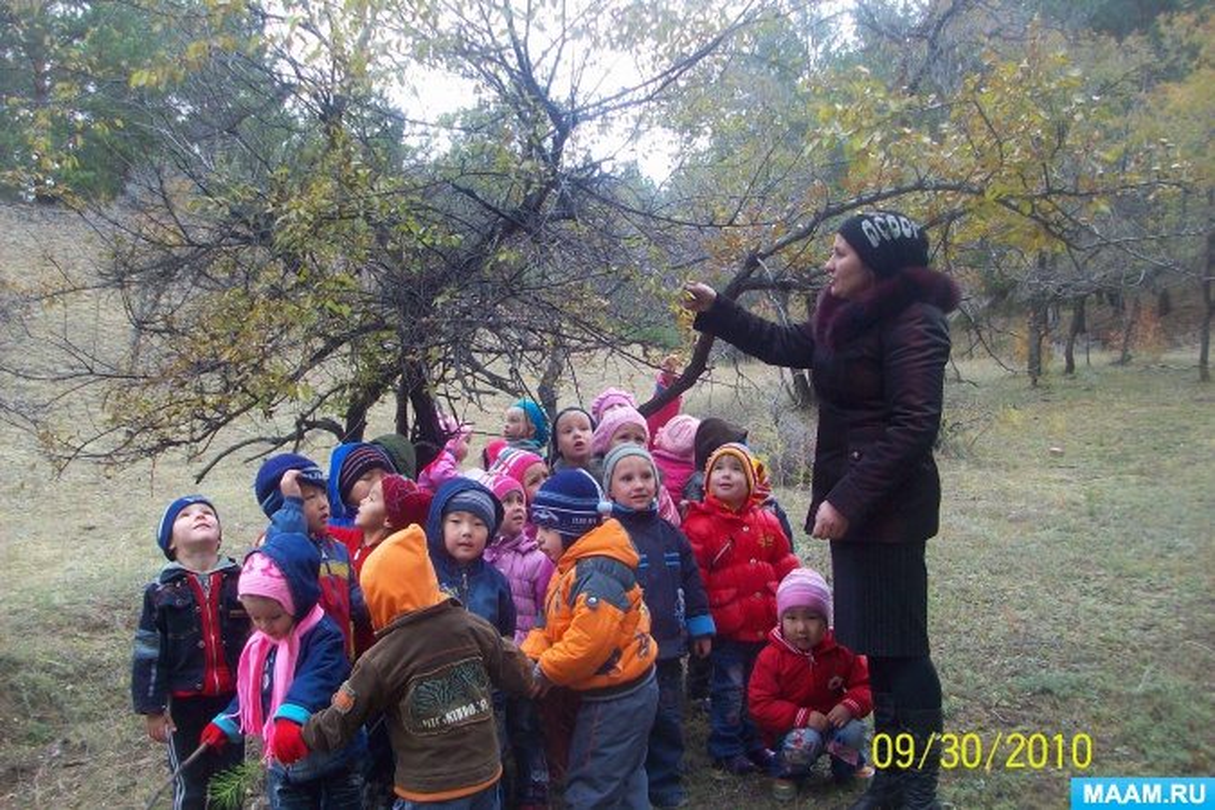 знакомство дошкольников с детской библиотекой сценарий