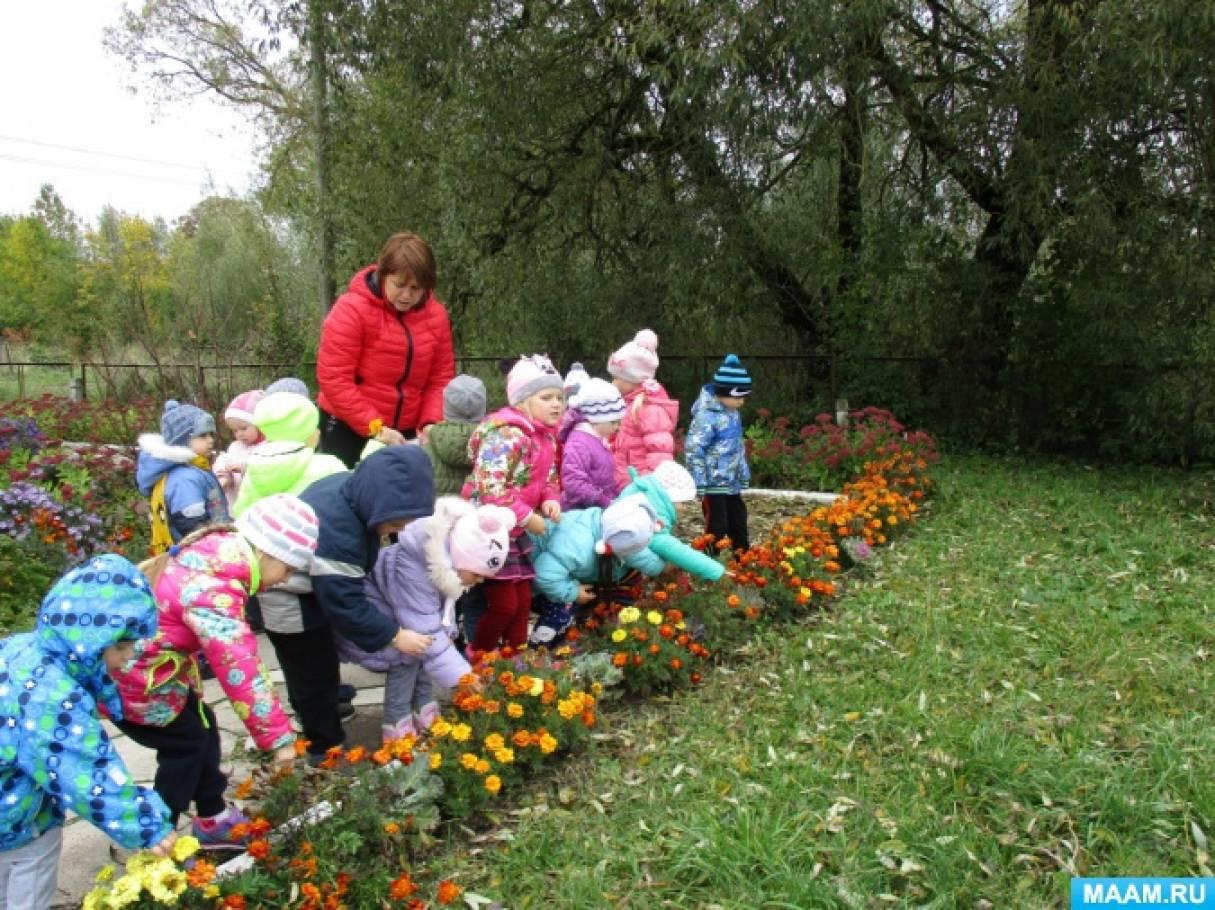 как познакомить дошкольников с москвой