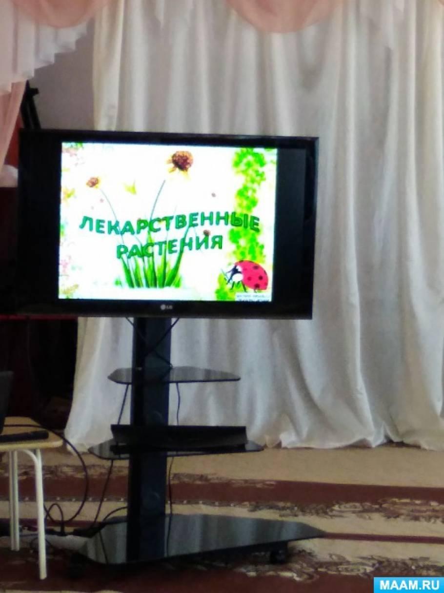 Фотоотчет о мероприятии в детском саду «Лекарственные растения— замечательное богатство природы»