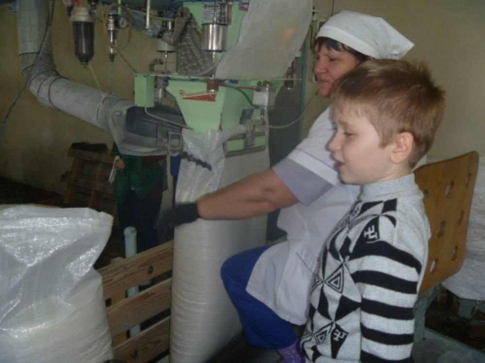 Производство сахара в домашних условия 876