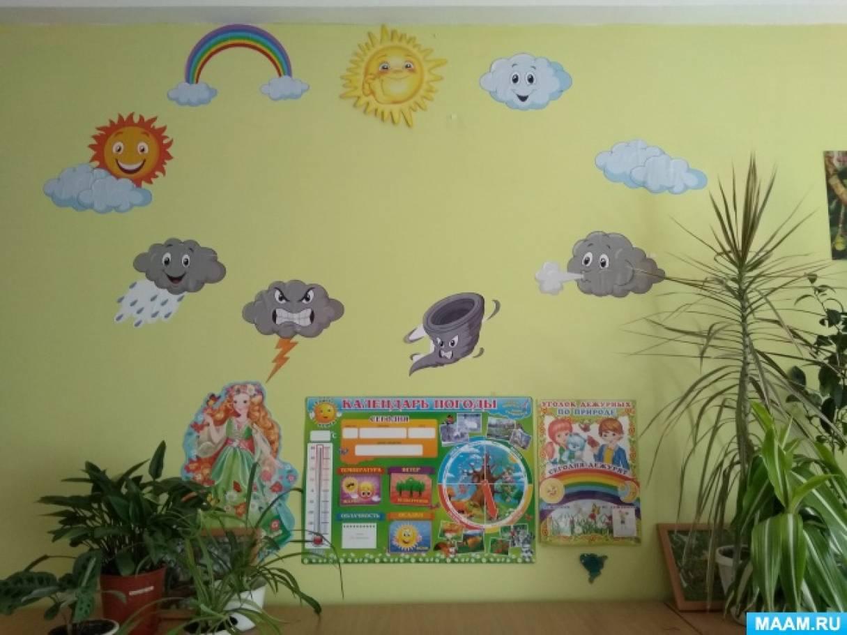 Оформление уголка природы в детских садах картинки