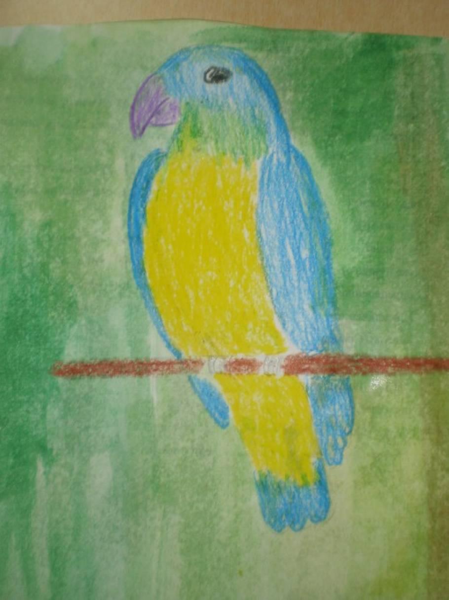 Учимся рисовать. МК «Попугай»