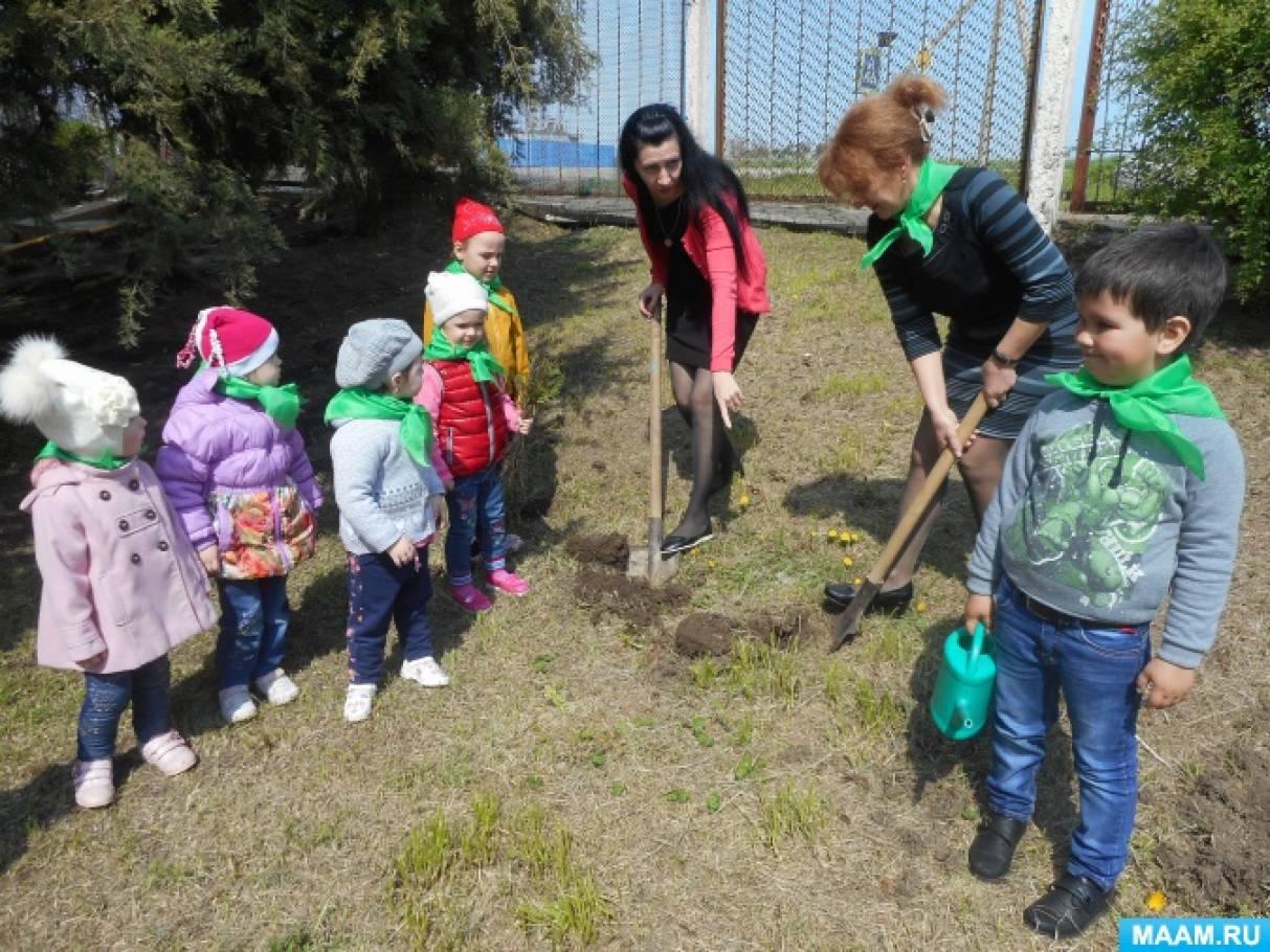 Весенний праздник «Эколята — молодые защитники природы. День деревьев» в рамках экологического проекта «Весна»