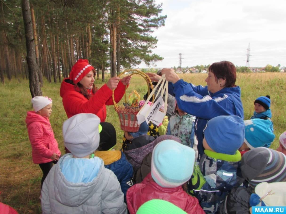 Туристический слёт в детском саду