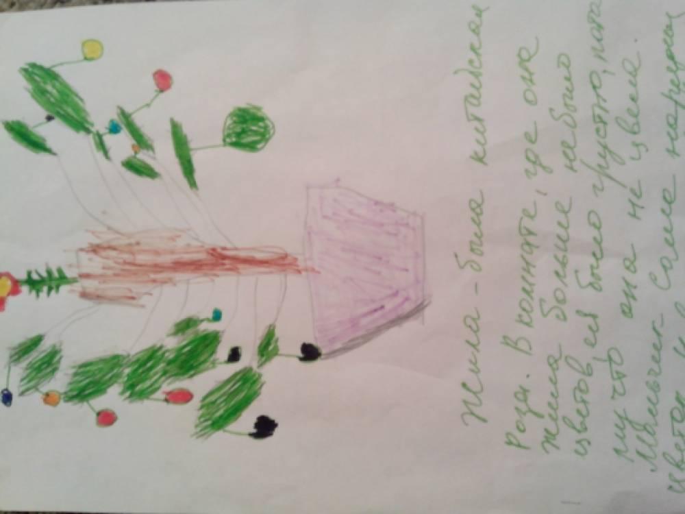 Детские сказки «Мое комнатное растение»