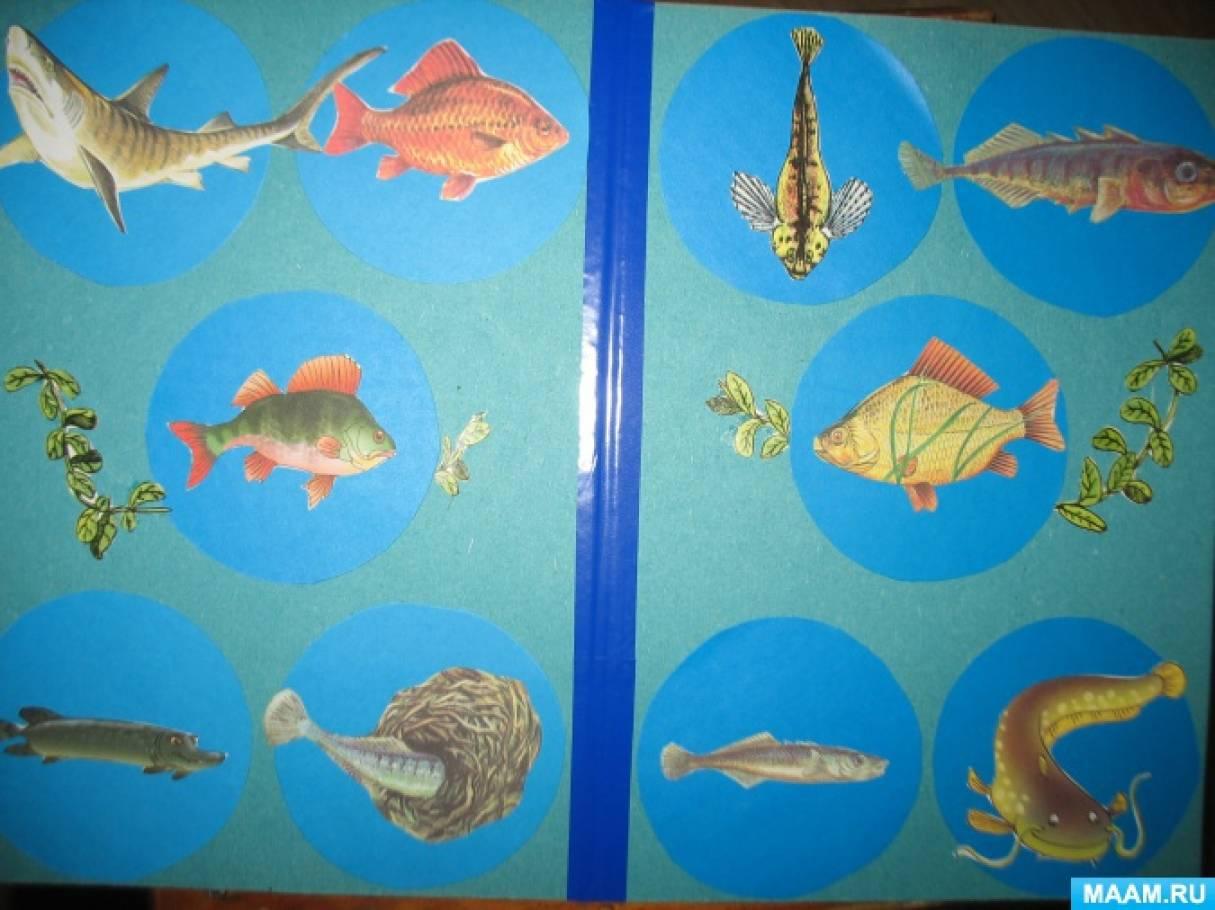 Многофункциональная игра «Рыбы»