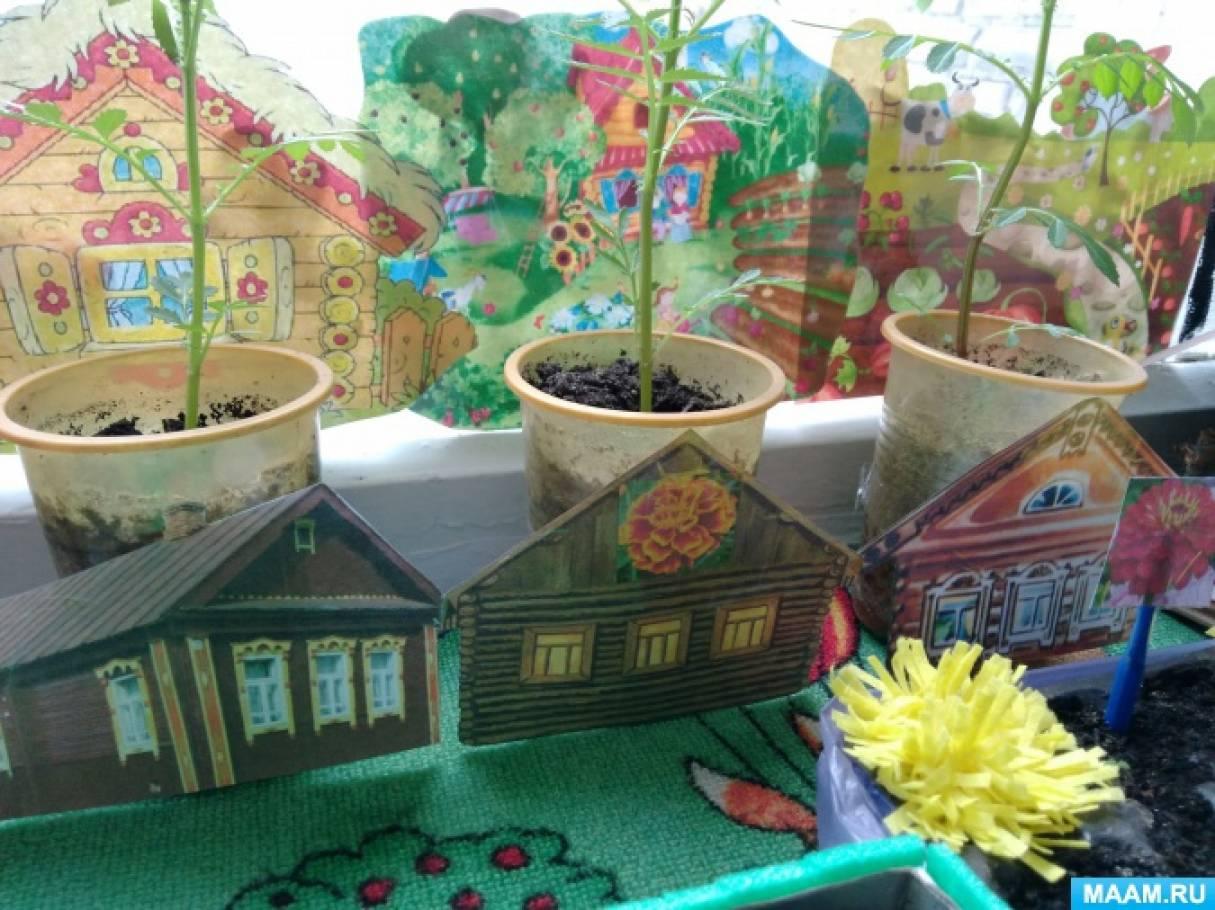«Огород на окне» в группе раннего развития