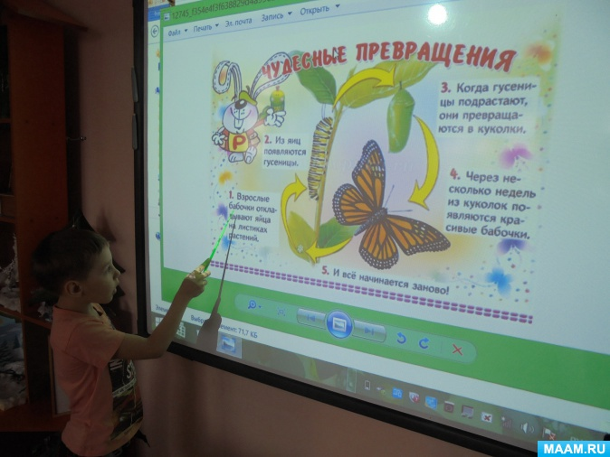 ООД «Такие разные бабочки» в подготовительной группе