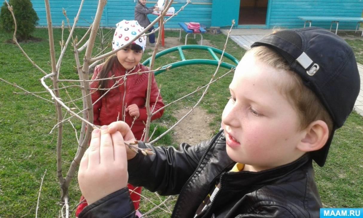 Проект по экологической безопасности «Ребёнок и природа»