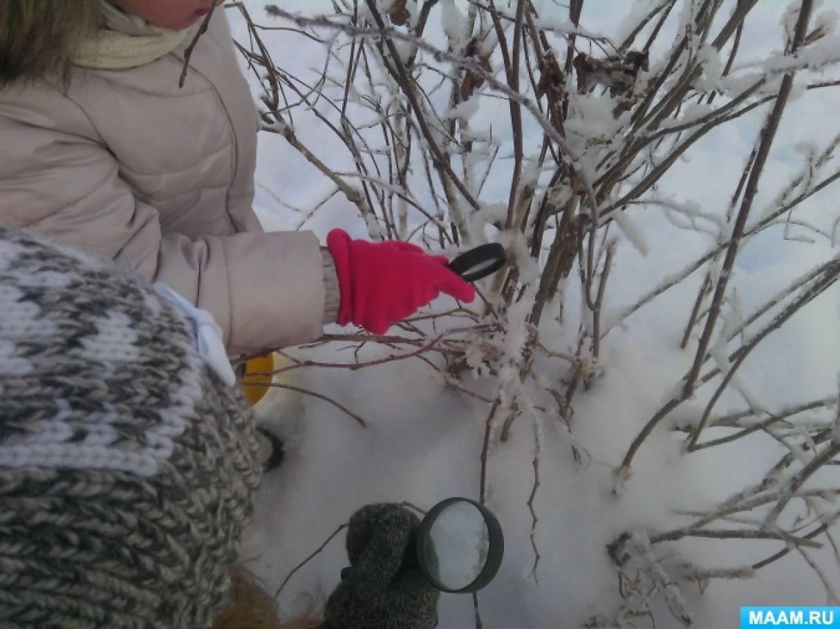 знакомство дошкольника с полезными ископаемыми