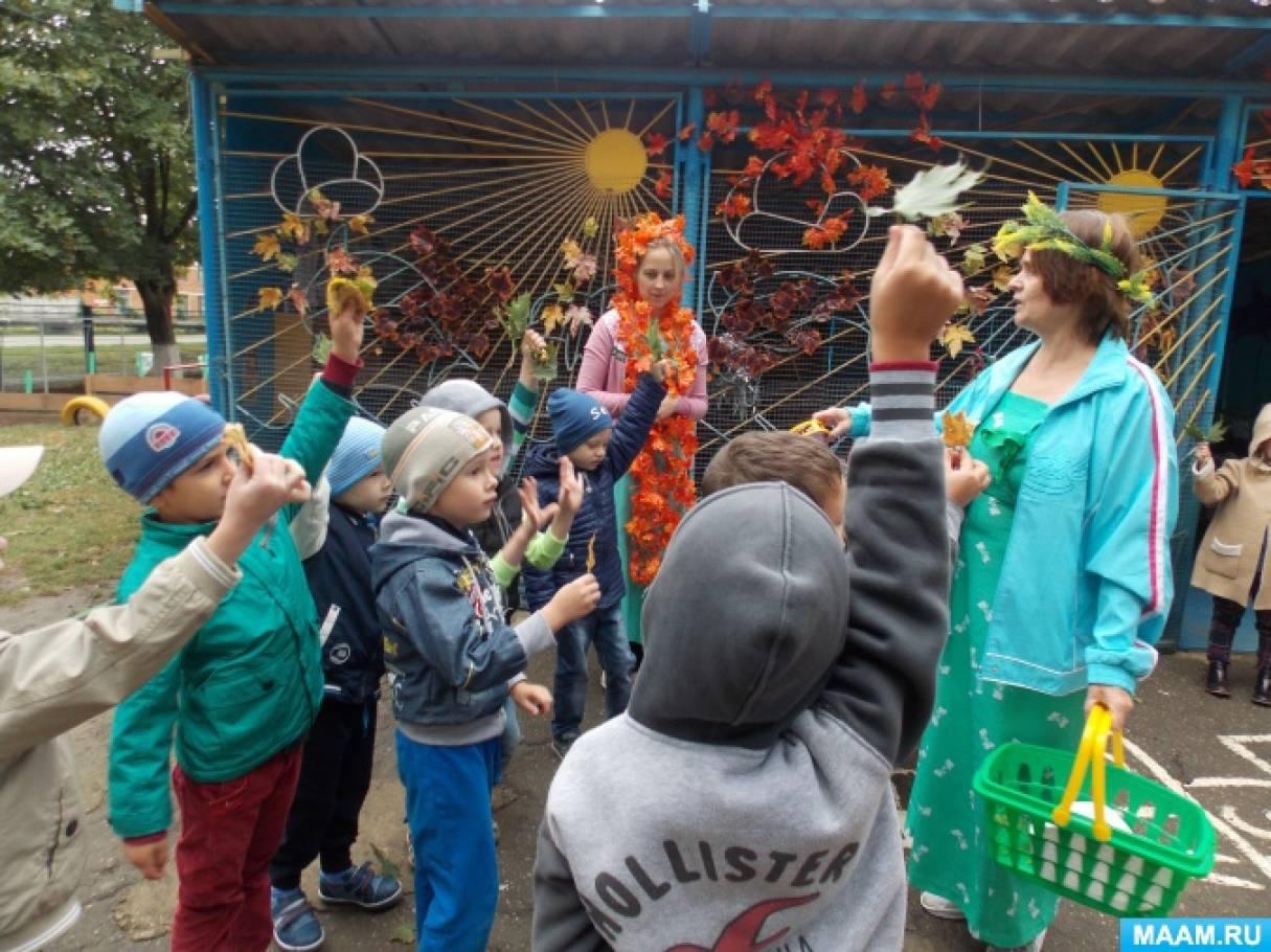 знакомство с растениями от группы к группе дошкольников