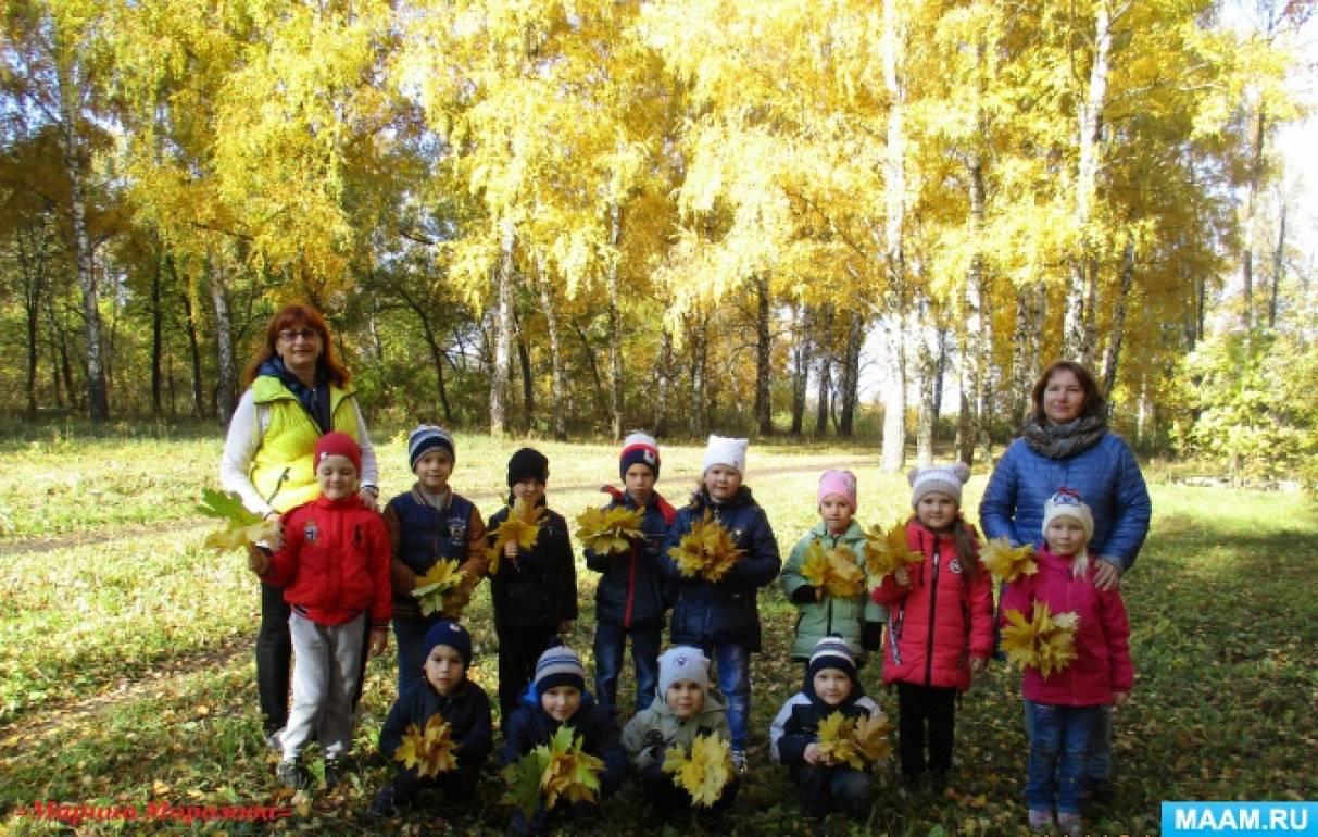 Фотоотчёт о прогулке в парк «Вот она какая— осень золотая!»