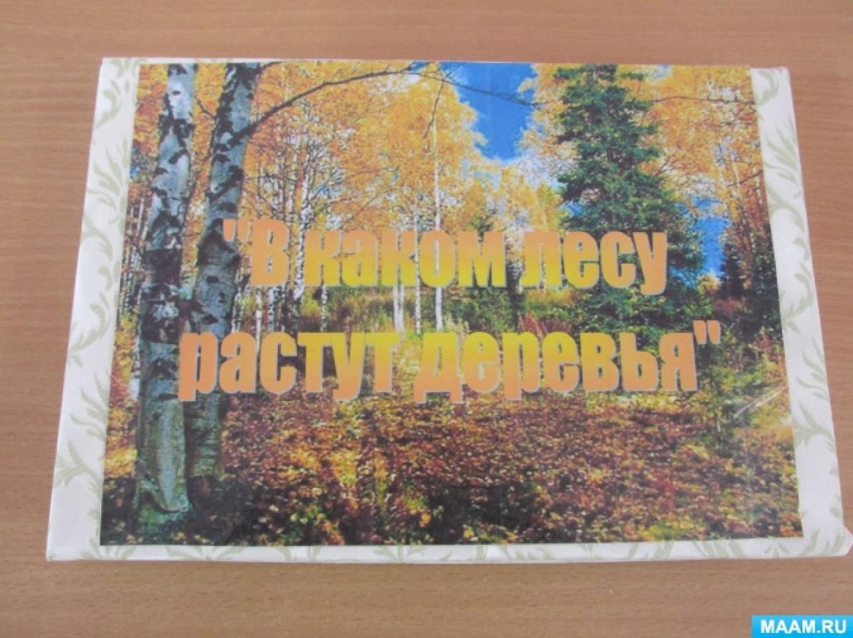 Дидактическая игра по экологии для детей 4–6 лет «В каком лесу растут деревья»