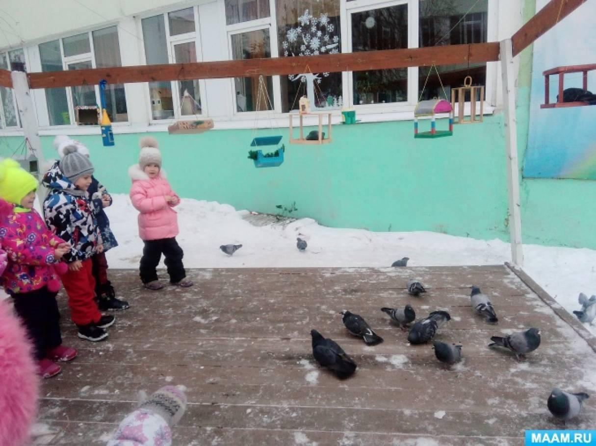Акция «Покормите птиц!»