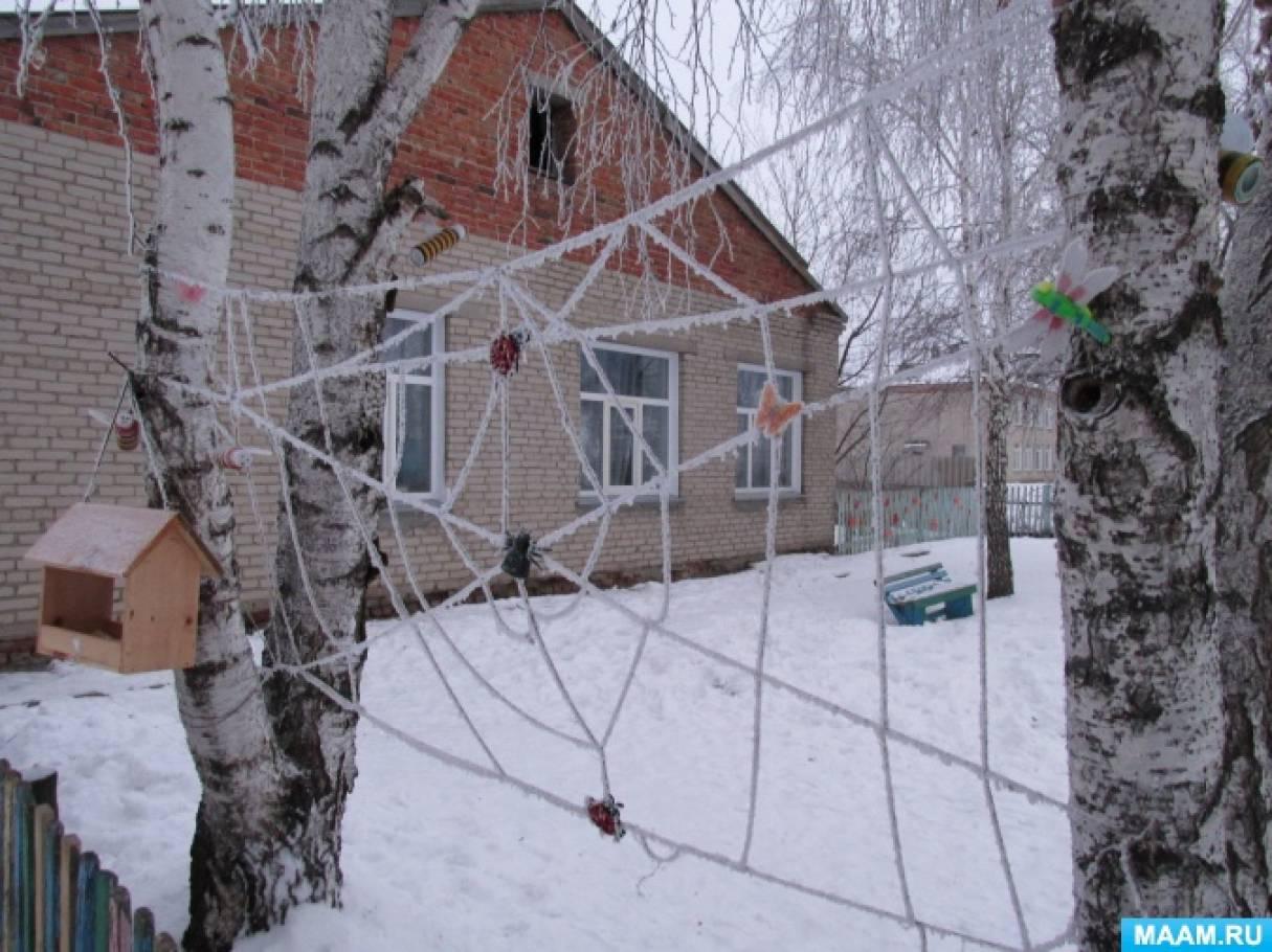 Фотоотчет «Зимние прогулки»