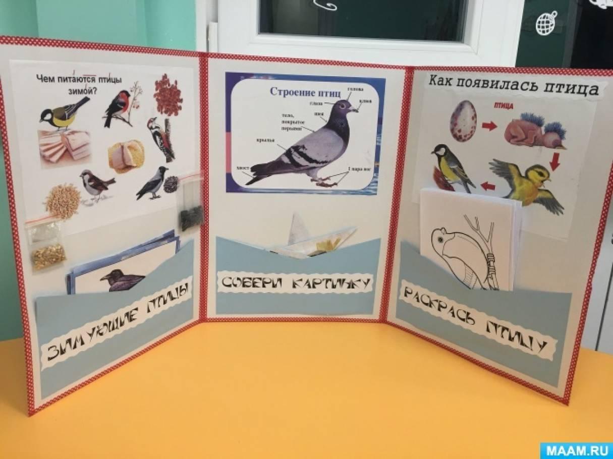 меня лэпбук зимующие птицы картинки с названиями школу приходят дети