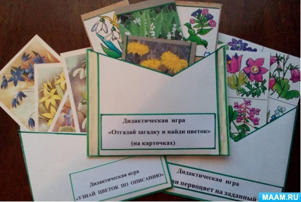 Конспекты дидактических игр «Первоцветы», «Угадай цветок по описанию» и «Правила поведения в природе»