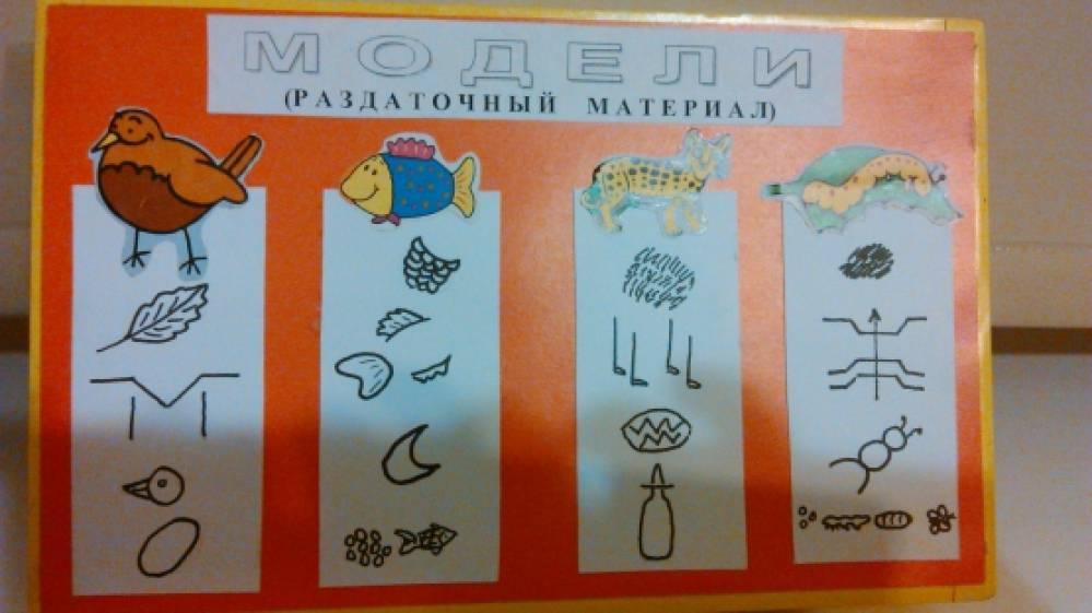 модели в экологической работе с детьми