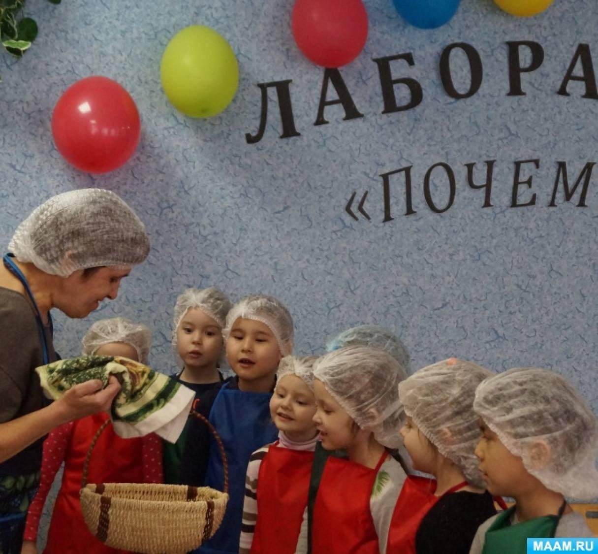 Фотоотчет об опытно-экспериментальной деятельности «Секрет картофеля» для детей старшей группы