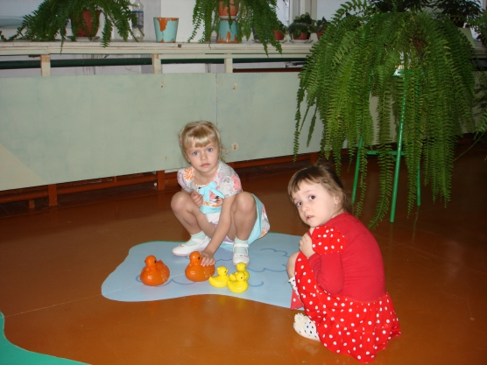 знакомство с морской свинкой в детском саду