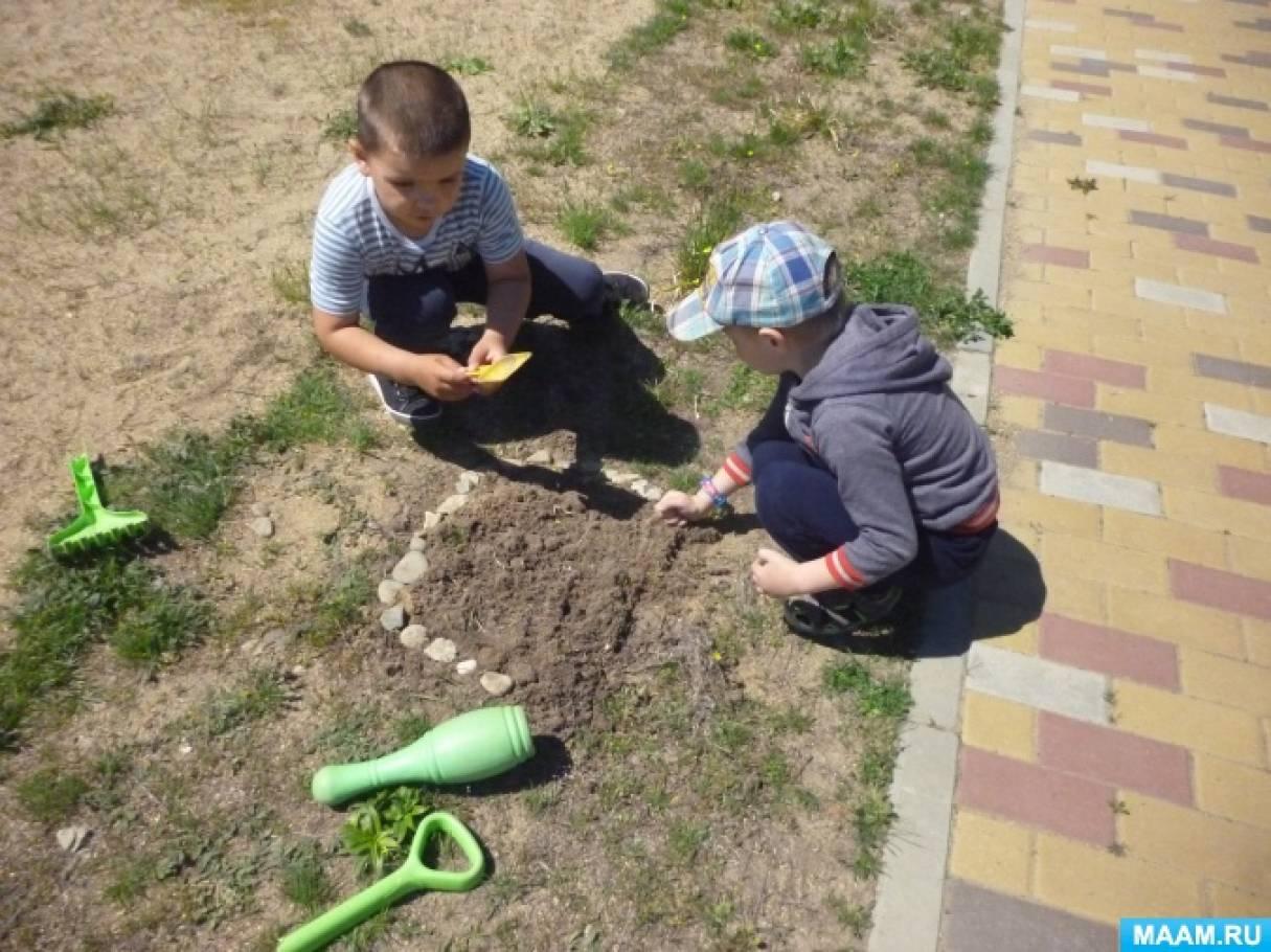 Фотоотчёт «Посев семян цветов на площадке»