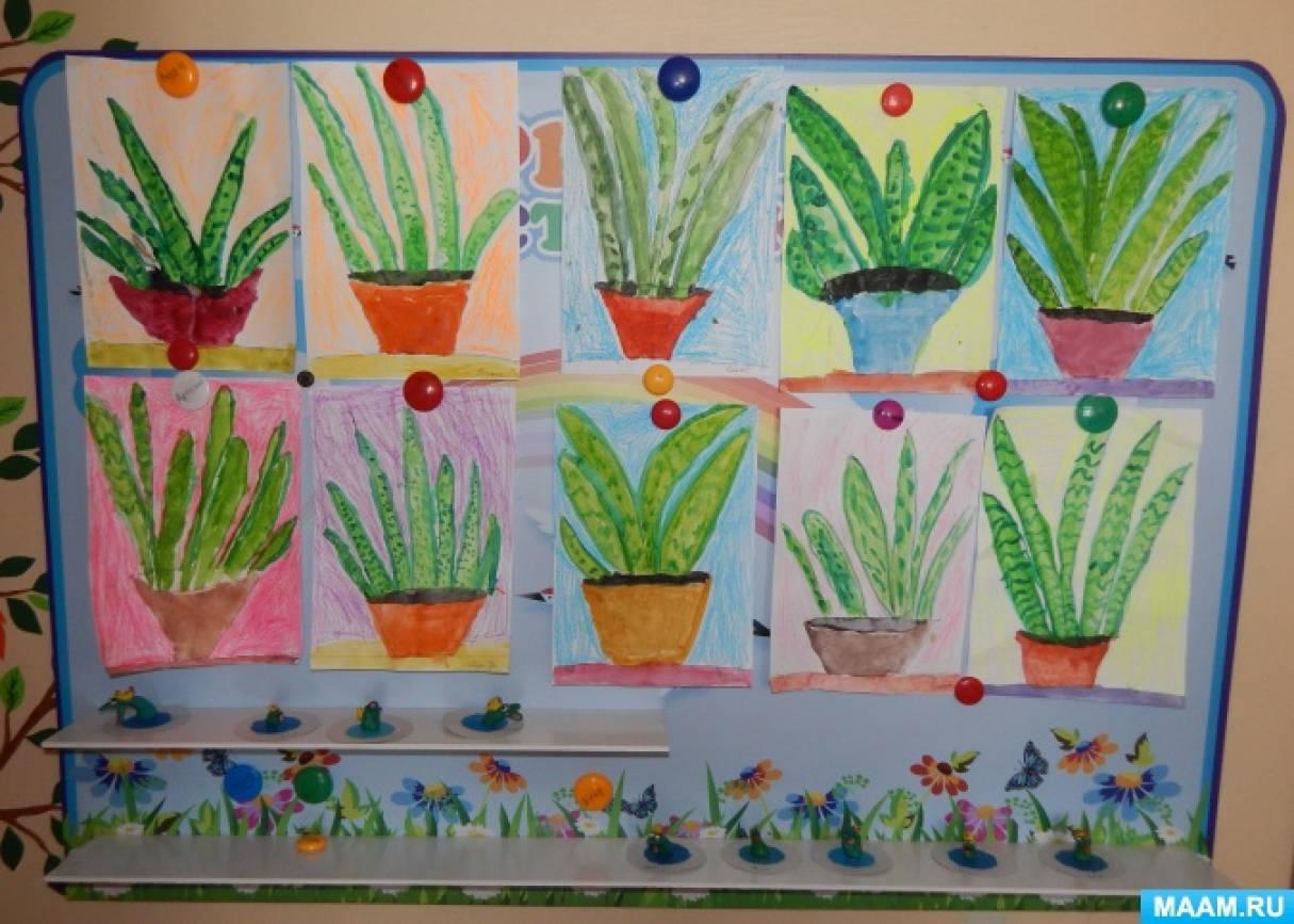 Конспект рисования цветы в подготовительной группе