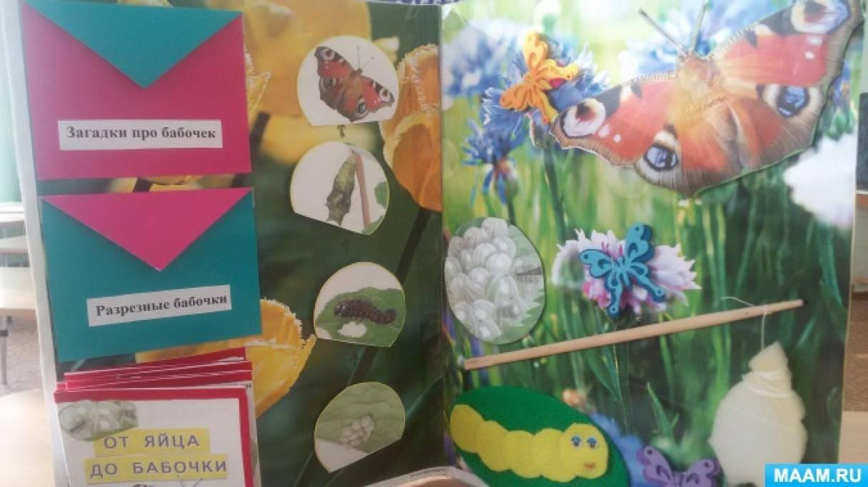 Лэпбук «Как появляется бабочка»