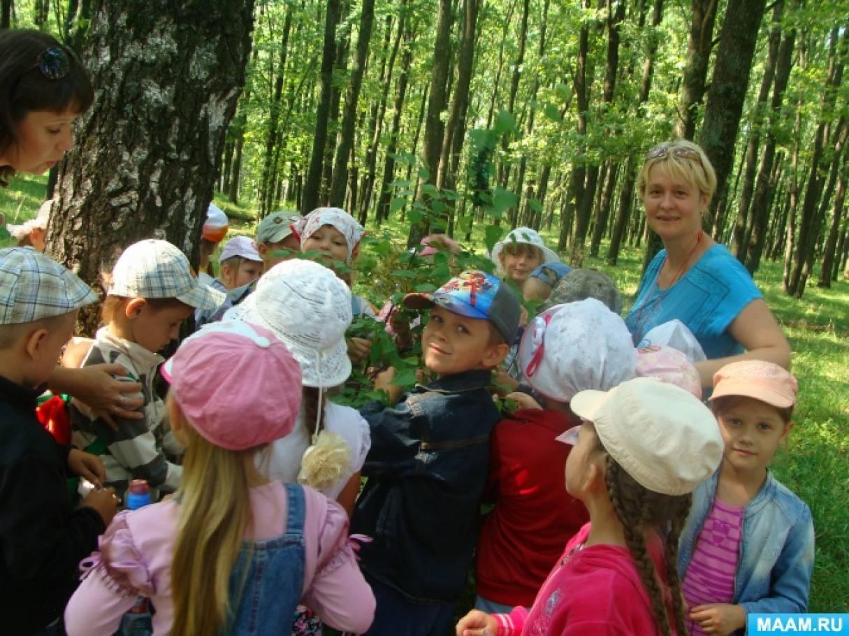 Фотоотчет о развлечении «Троица в лесу»
