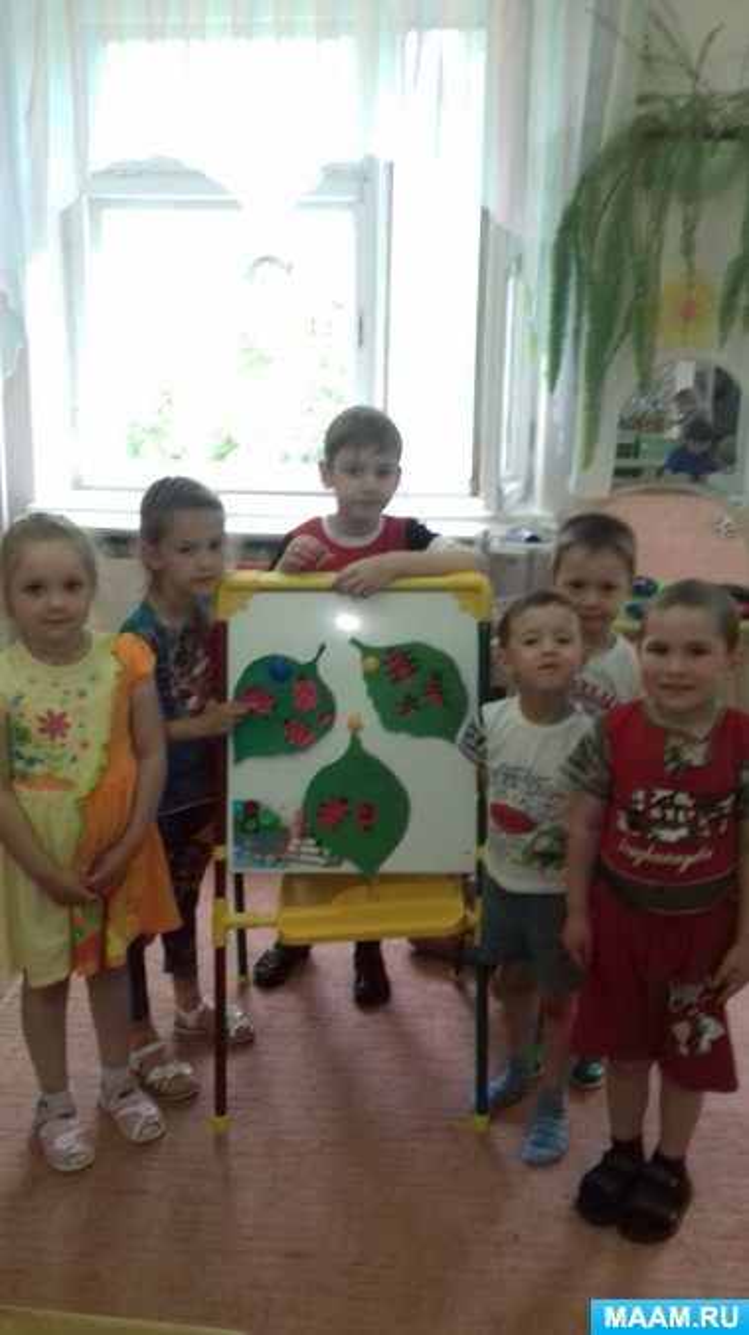 Конспект занятия с детьми старшей группы «Божья коровка»