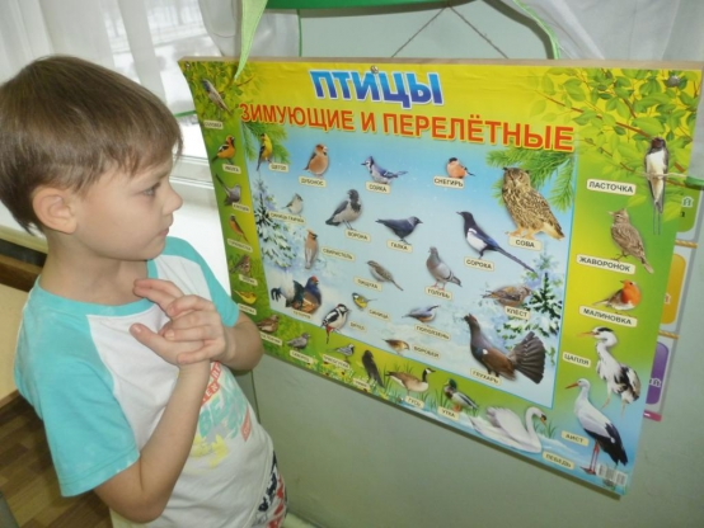 НОД в подготовительной группе «Пришла ...: www.maam.ru/detskijsad/nod-po-teme-prishla-vesna-prileteli-pticy.html