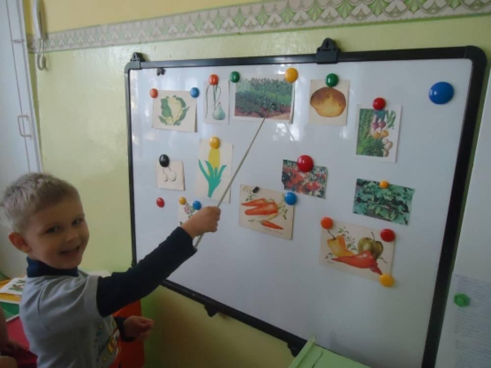 «Овощи». Конспект интегрированного занятия в старшей ...