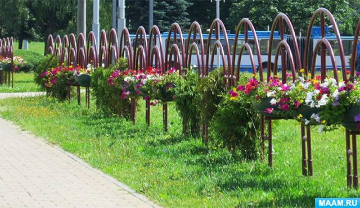 Фотоочерк о фестивале цветников и ландшафтной архитектуры в Минске