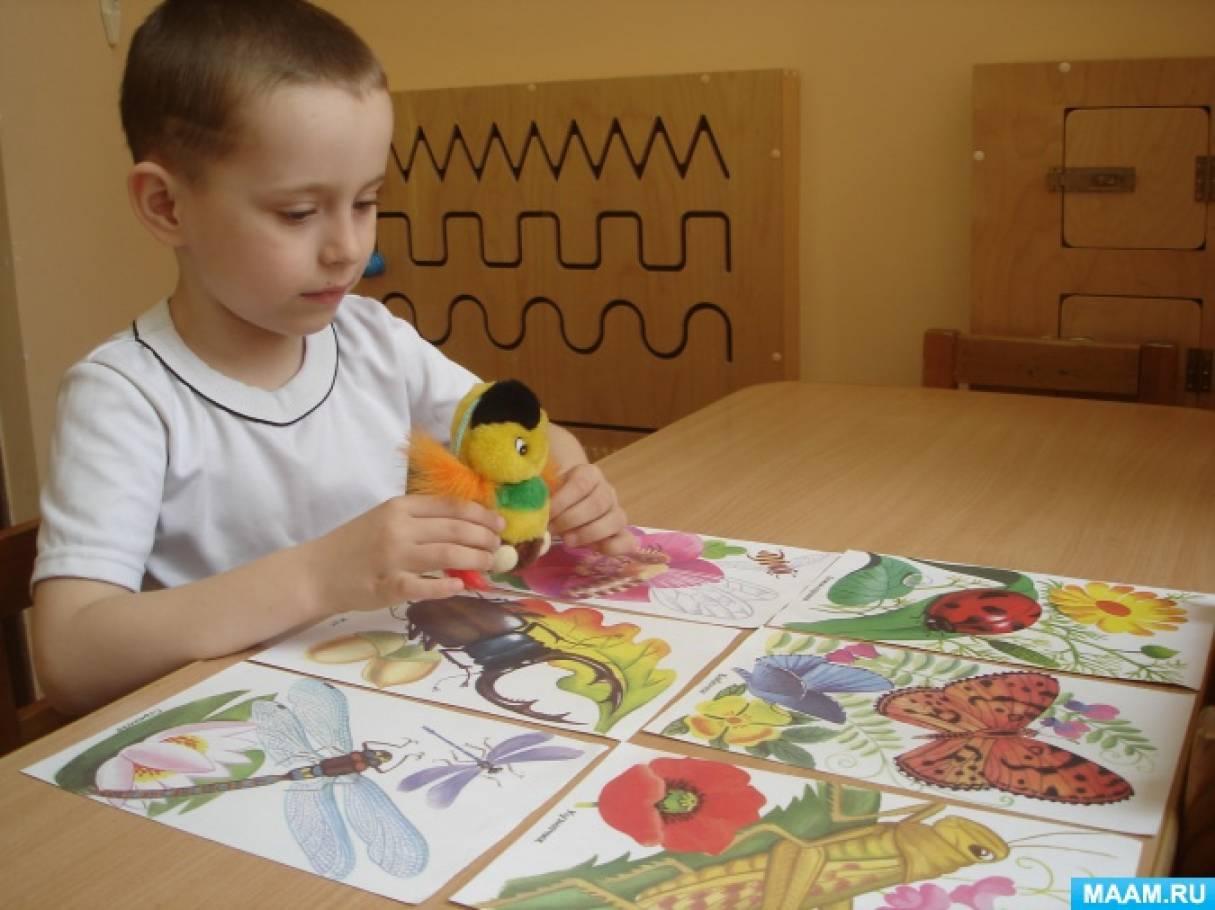 Индивидуальное коррекционное занятие с ребенком с ЗПР Тема: «Насекомые» Закрепление лексической темы по плану дефектолога