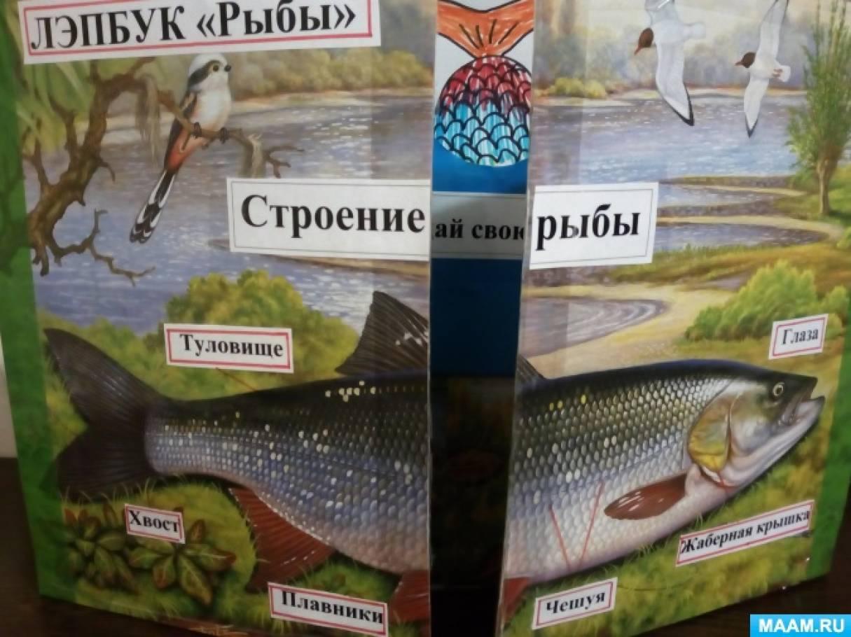 Дидактическое пособие— лэпбук «Рыбы»