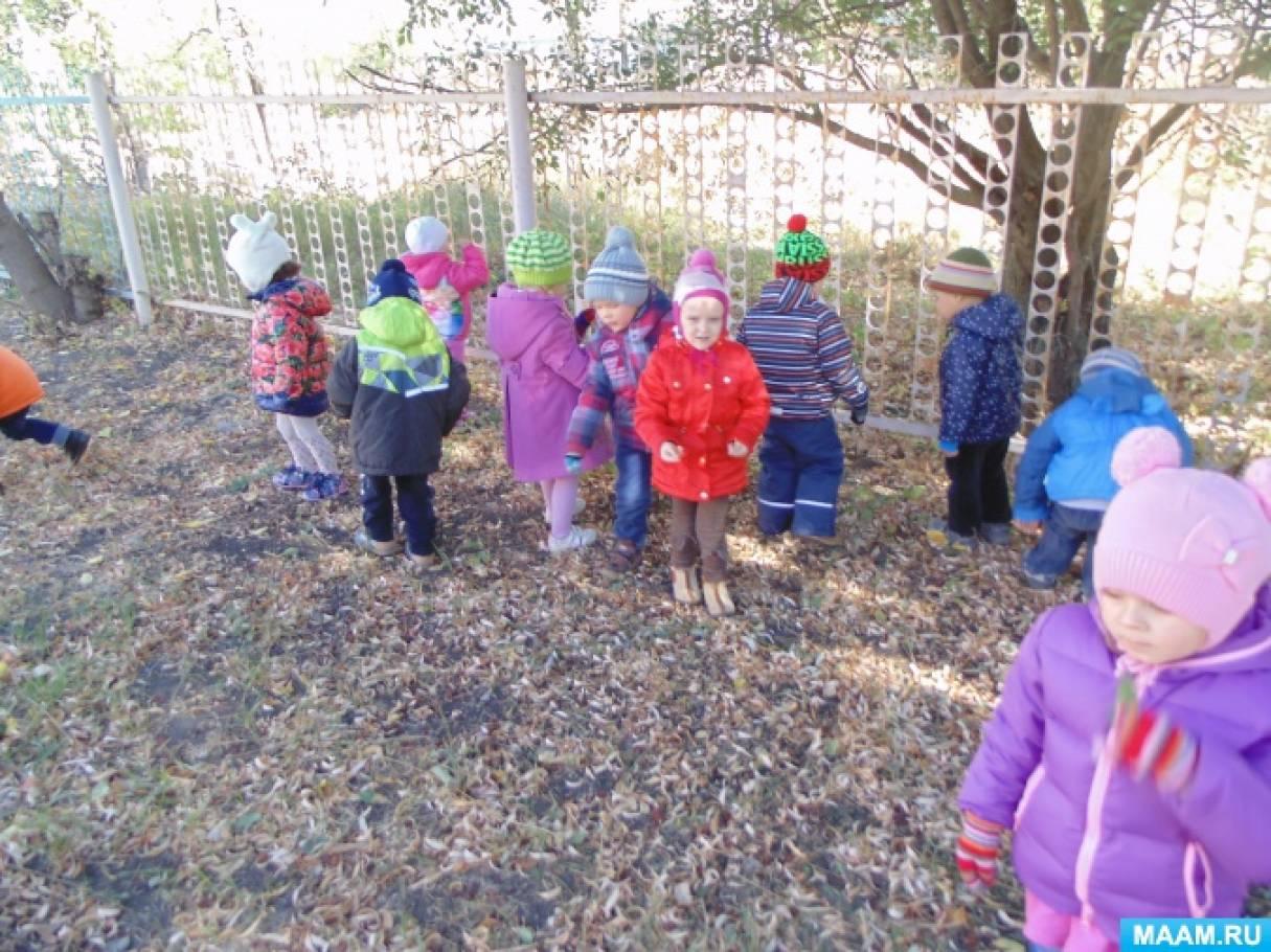 Краткосрочный проект для детей средней группы «Осеннее ...