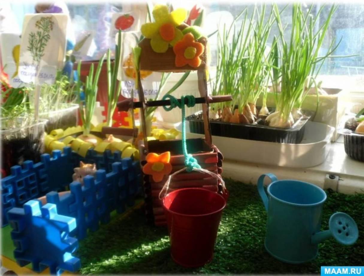 Огороды на подоконнике и на участке