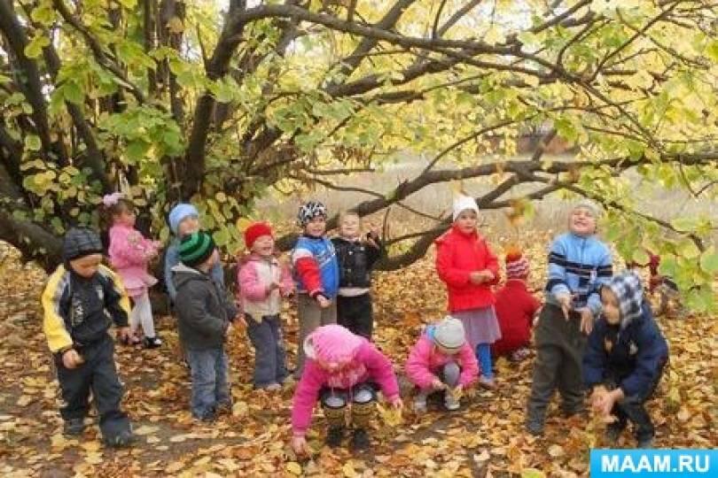 Экологический проект для старшей группы «Удивительный мир природы осенью». Исследовательская деятельность по изучению природы