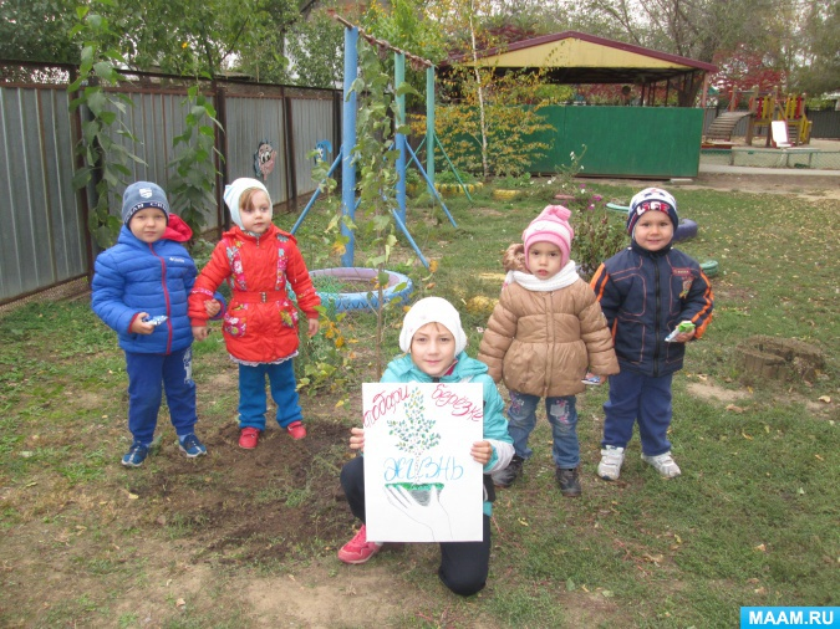 Экологическая акция «Подари жизнь березке»